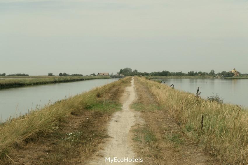 escursioni in bici sul delta del po